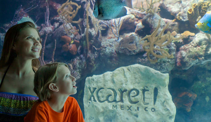 Xcaret Basic Private Tour