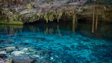 Cenote Swimming Private Tour