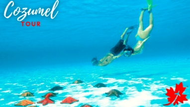 Cozumel Private Tour